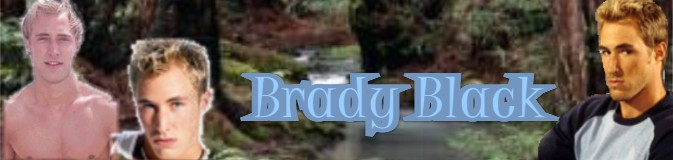 banner_biography_brady.jpg